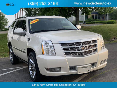 2014 Cadillac Escalade for sale at New Circle Auto Sales LLC in Lexington KY