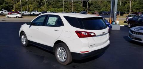 2019 Chevrolet Equinox for sale at Whitmore Chevrolet in West Point VA
