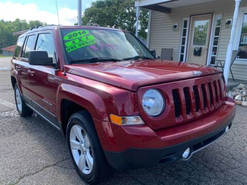 2014 Jeep Patriot for sale at G & G Auto Sales in Steubenville OH