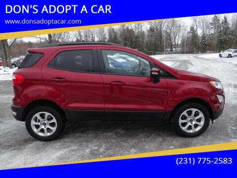 2018 Ford EcoSport for sale at DON'S ADOPT A CAR in Cadillac MI