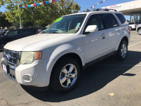 2010 Ford Escape for sale at Autos Wholesale in Hayward CA