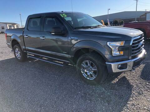 2015 Ford F-150 for sale at RAYMOND TAYLOR AUTO SALES in Fort Gibson OK