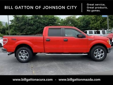 2013 Ford F-150 for sale at Bill Gatton Used Cars - BILL GATTON ACURA MAZDA in Johnson City TN