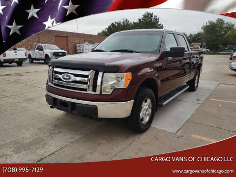 2010 Ford F-150 for sale at Cargo Vans of Chicago LLC in Mokena IL