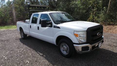 2011 Ford F-250 Super Duty for sale at action auto wholesale llc in Lillian AL