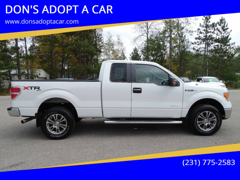 2014 Ford F-150 for sale at DON'S ADOPT A CAR in Cadillac MI