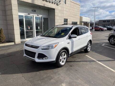2016 Ford Escape for sale at Cappellino Cadillac in Williamsville NY