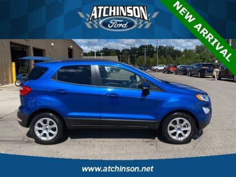 2019 Ford EcoSport for sale at Atchinson Ford Sales Inc in Belleville MI