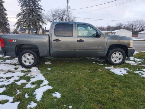 2011 Chevrolet Silverado 1500 for sale at Drive Motor Sales in Ionia MI