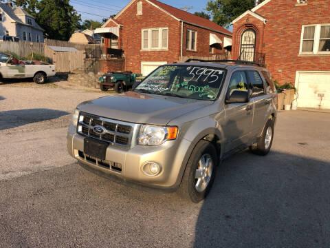 2010 Ford Escape for sale at Kneezle Auto Sales in Saint Louis MO