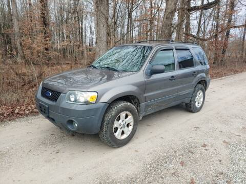 2006 Ford Escape for sale at Doyle's Auto Sales and Service in North Vernon IN