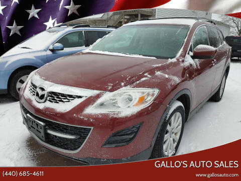 2010 Mazda CX-9 for sale at Gallo's Auto Sales in North Bloomfield OH