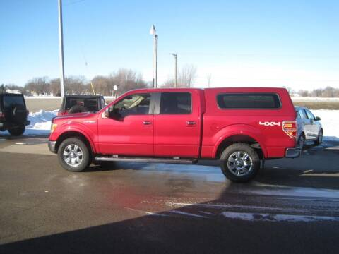 2010 Ford F-150 for sale at G T AUTO PLAZA Inc in Pearl City IL