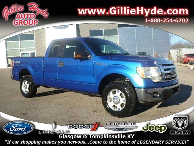 2010 Ford F-150 for sale at Gillie Hyde Auto Group in Glasgow KY
