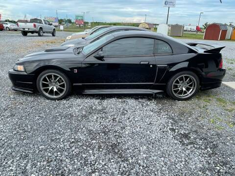 2004 Ford Mustang for sale at Tri-Star Motors Inc in Martinsburg WV
