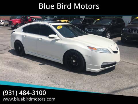 2010 Acura TL for sale at Blue Bird Motors in Crossville TN