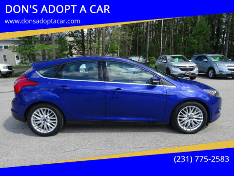 2014 Ford Focus for sale at DON'S ADOPT A CAR in Cadillac MI