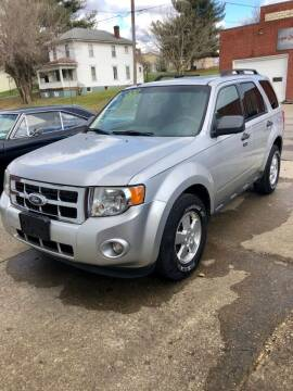 2011 Ford Escape for sale at Stephen Motor Sales LLC in Caldwell OH