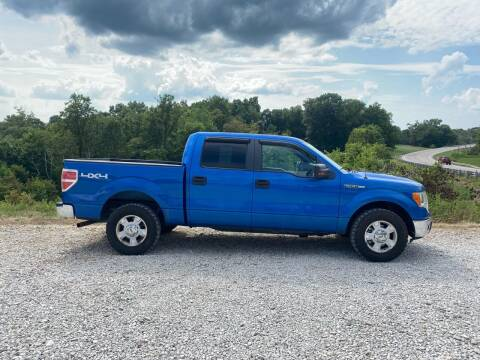2009 Ford F-150 for sale at Skyline Automotive LLC in Woodsfield OH