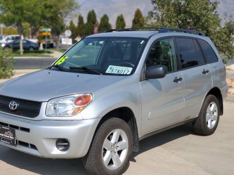 2005 Toyota RAV4 for sale at FRESH TREAD AUTO LLC in Springville UT