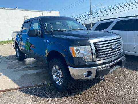 2010 Ford F-150 for sale at M-97 Auto Dealer in Roseville MI