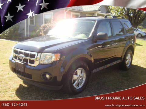 2010 Ford Escape for sale at Brush Prairie Auto Sales in Battle Ground WA