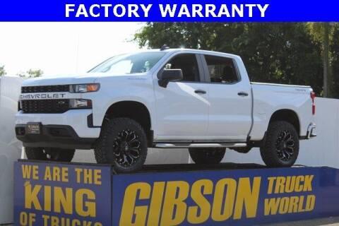 2019 Chevrolet Silverado 1500 for sale at Gibson Truck World in Sanford FL