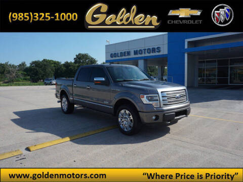 2013 Ford F-150 for sale at GOLDEN MOTORS in Cut Off LA