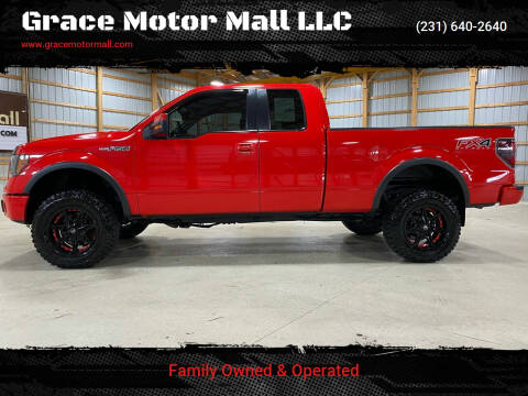 2012 Ford F-150 for sale at Grace Motor Mall LLC in Traverse City MI
