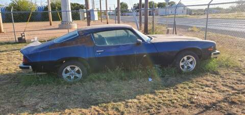 1974 Chevrolet Camaro for sale at CLASSIC MOTOR SPORTS in Winters TX