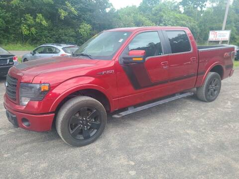2014 Ford F-150 for sale at B & B GARAGE LLC in Catskill NY