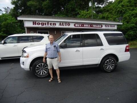 2017 Ford Expedition for sale at HOGSTEN AUTO WHOLESALE in Ocala FL