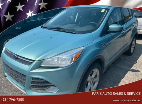 2013 Ford Escape for sale at Paris Auto Sales & Service in Big Rapids MI