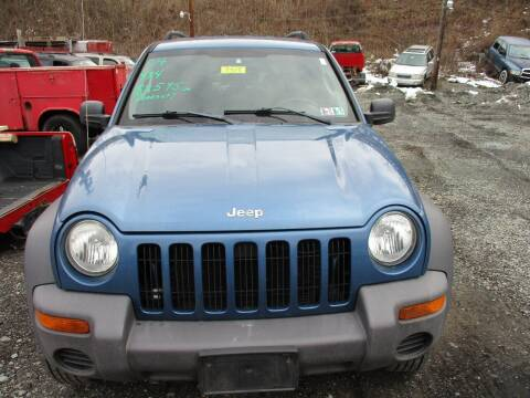 2004 Jeep Liberty for sale at FERNWOOD AUTO SALES in Nicholson PA