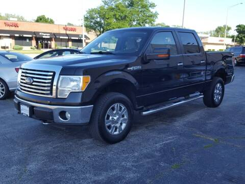 2010 Ford F-150 for sale at AUTOSAVIN in Elmhurst IL