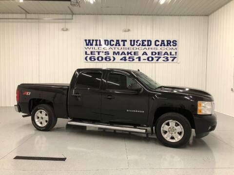 2013 Chevrolet Silverado 1500 for sale at Wildcat Used Cars in Somerset KY