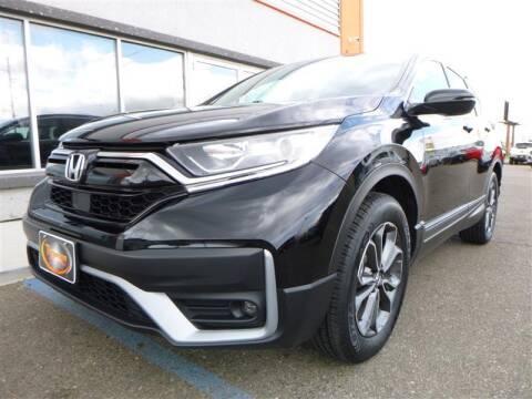 2020 Honda CR-V for sale at Torgerson Auto Center in Bismarck ND