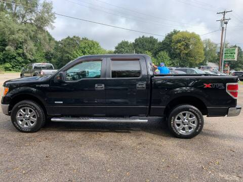 2013 Ford F-150 for sale at SS AUTO PRO'S in Otsego MI