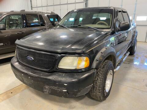 2003 Ford F-150 for sale at RDJ Auto Sales in Kerkhoven MN