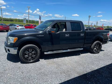 2010 Ford F-150 for sale at Tri-Star Motors Inc in Martinsburg WV