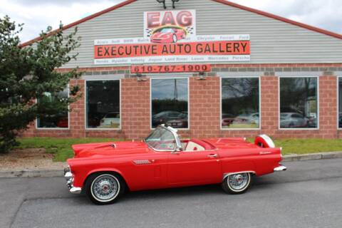 1956 Ford Thunderbird for sale at EXECUTIVE AUTO GALLERY INC in Walnutport PA
