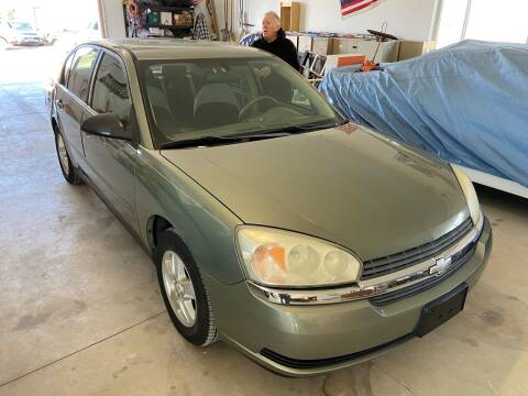 2005 Chevrolet Malibu for sale at The Auto Depot in Mount Morris MI
