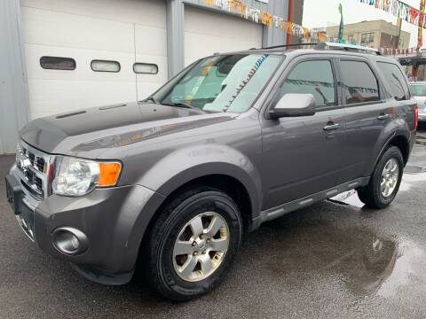2011 Ford Escape for sale at Gallery Auto Sales in Bronx NY
