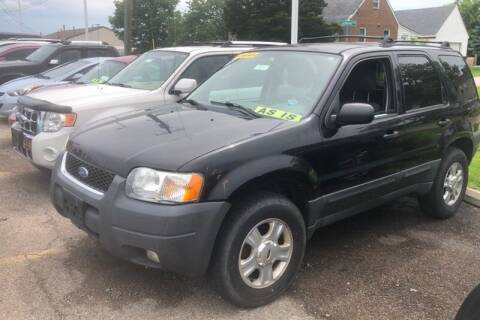 2003 Ford Escape for sale at WEINLE MOTORSPORTS in Cleves OH