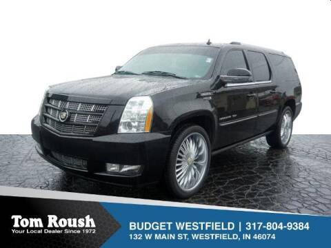 2012 Cadillac Escalade ESV for sale at Tom Roush Budget Westfield in Westfield IN