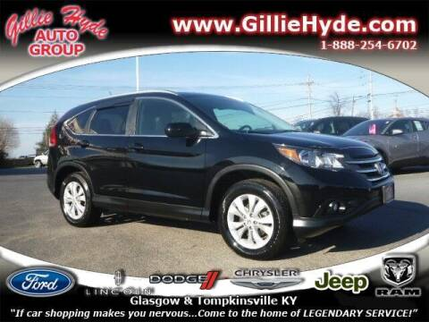 2013 Honda CR-V for sale at Gillie Hyde Auto Group in Glasgow KY