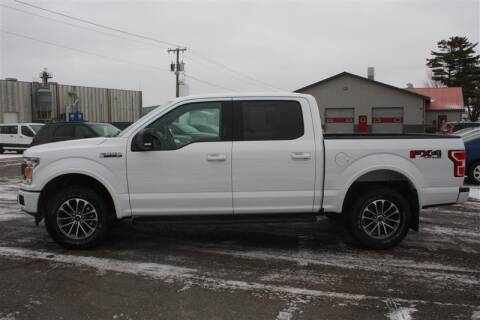 2019 Ford F-150 for sale at SCHMITZ MOTOR CO INC in Perham MN