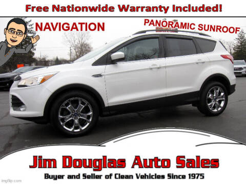 2014 Ford Escape for sale at Jim Douglas Auto Sales in Pontiac MI