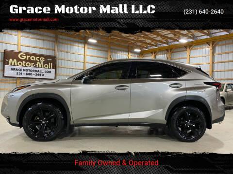 2017 Lexus NX 200t for sale at Grace Motor Mall LLC in Traverse City MI
