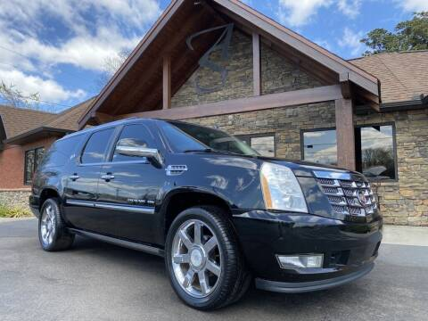 2010 Cadillac Escalade ESV for sale at Auto Solutions in Maryville TN